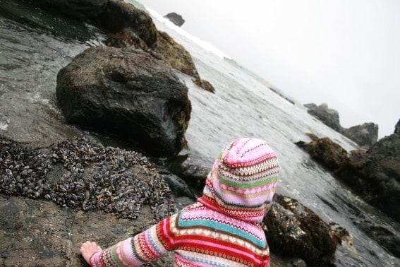Are tide pools safe? Tips on tide pool safety