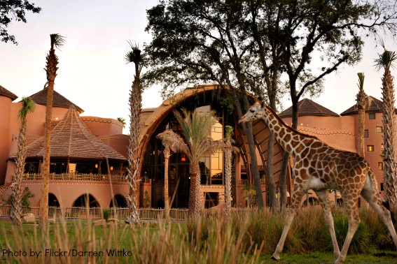 Best Kid-friendly hotels in Orlando- Disney Animal Lodge and Villas Orlando, FL