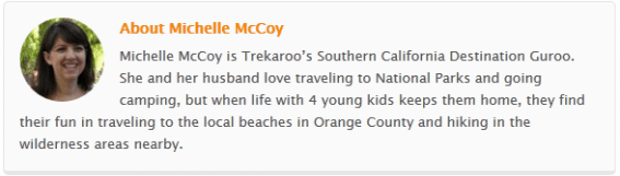 Michelle McCoy