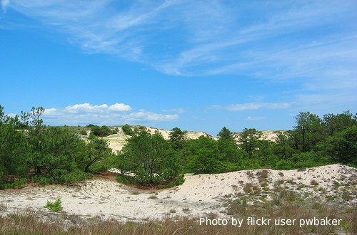 Cape Henlopen State Park  top 10 things to do with kids in delaware