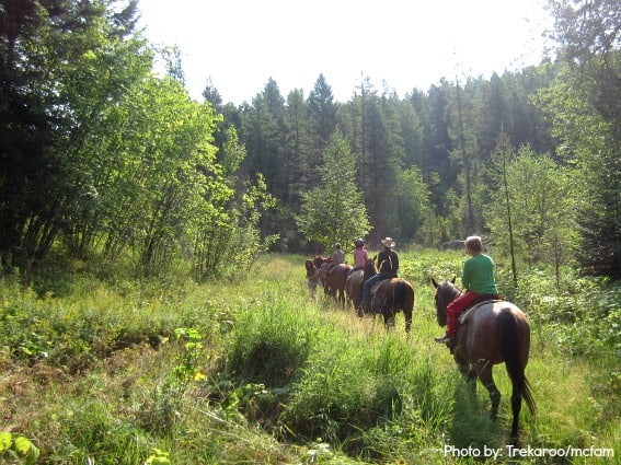 Montana Top 10 Horseback Riding