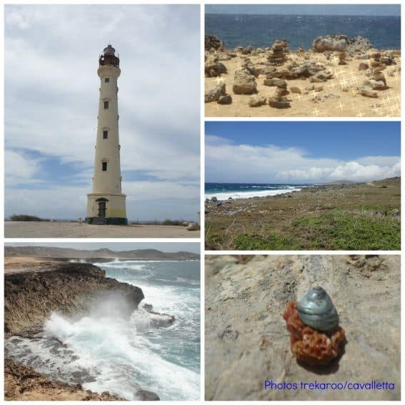 Kid friendly Aruba wishes collage