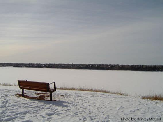 Calgary Cold