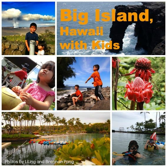 Big Island Diversity_header
