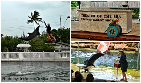 Florida Keys - Theatre of the Sea