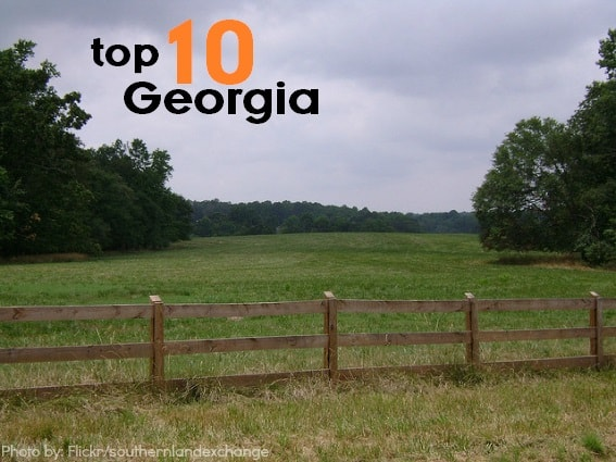 Top 10 things for families to do in Georgia