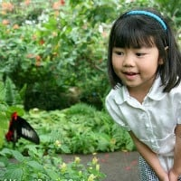 Best Gardens for Families