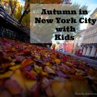 Autumn in New York City with Kids square