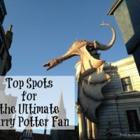 Ultimate Harry Potter Fan Spots