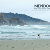 Mendocino Pet-friendly family getaway