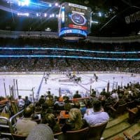 ducks game: taking your family to a hockey game